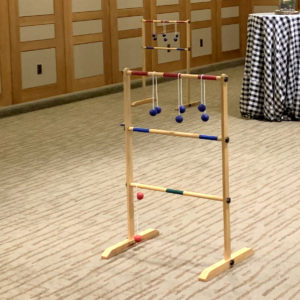 Ladder Ball Golf Image